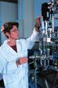 Arbeiten am Bioreaktor BIOSTAT C.