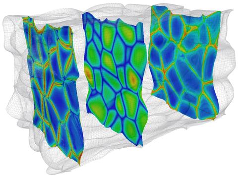 Grain boundaries in a polycrystal