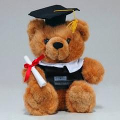 Dr. Bear